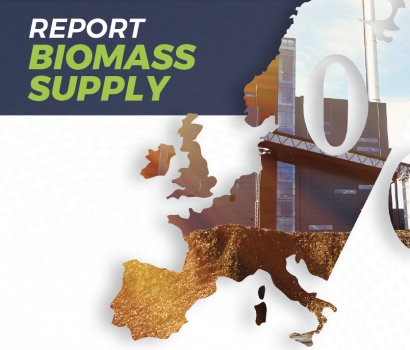 El sector forestal cubre el setenta por ciento del suministro de biomasa para energía en la UE