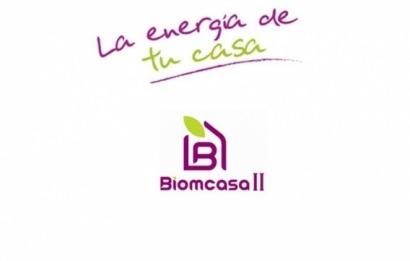 Nueva convocatoria del programa Biomcasa para instalaciones térmicas de biomasa
