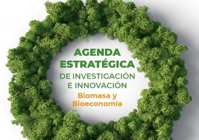 La agenda de investigación e innovación en biomasa no descarta mantener centrales de carbón con biocombustibles