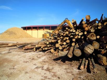 Avebiom y Bioplat mantienen viva la llama de la bioenergía en la COP25