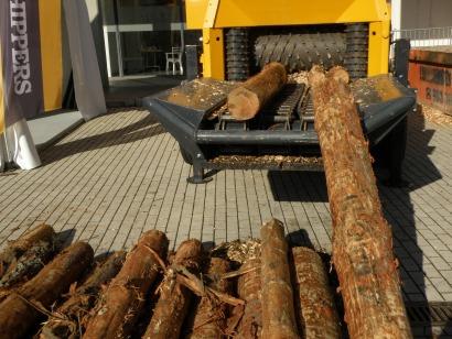 Hueco importante para el sector forestal en Expobiomasa