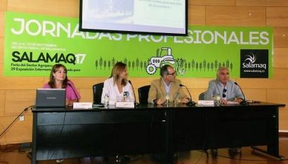 """La bioenergía, una de las aliadas para frenar los """"superincendios"""" del cambio climático"""