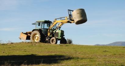Acciona ve compatible el uso de paja para energía y ganadería y Ence dice que no la usa