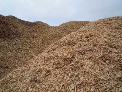 El Gobierno convoca ayudas para suministrar biomasa y generar energía en el sector agroalimentario