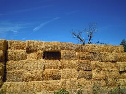 AgroBioHeat abre una ventanilla para potenciar la biomasa en el medio rural