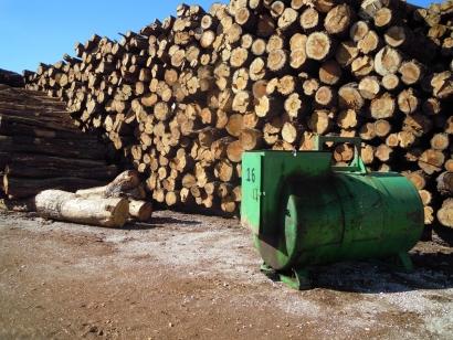 Desde el 21 de noviembre hasta finales de año Europa podría vivir energéticamente solo con biomasa