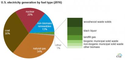 EEUU: Los combustibles derivados de biomasa y residuos contribuyeron con el 2% a la generación eléctrica en 2016