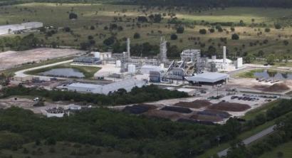 Florida: Etanol a partir de biomasa no alimenticia