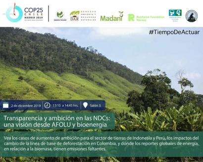 Bioenergía desde el minuto uno en la COP25, pero no desde España