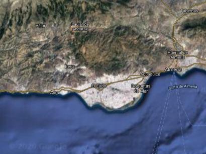 Ence pretende llegar a los 270 megavatios eléctricos con biomasa en Andalucía