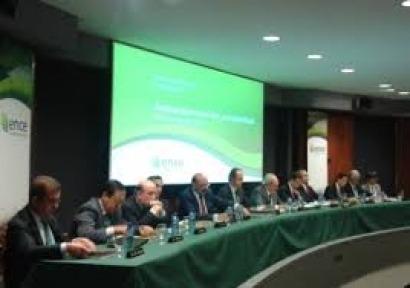 Ence anuncia la construcción de 140 MW de biomasa en Canarias