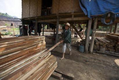 La producción mundial de pélets sigue animando el mercado de la madera