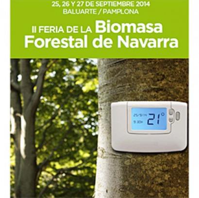 La biomasa térmica tiene una deducción fiscal del 15% en Navarra.