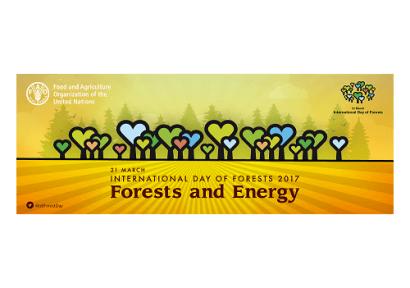 Biomasa forestal para energía: FAO y forestales, sí; ecologistas, no