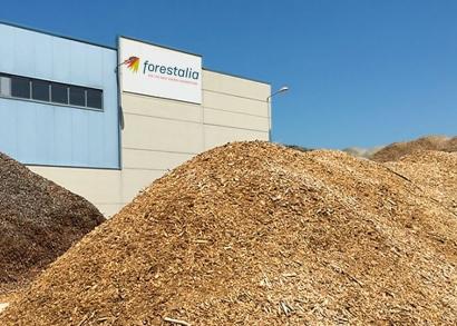 Puertas abiertas para hablar de las plantas de biomasa en El Bierzo
