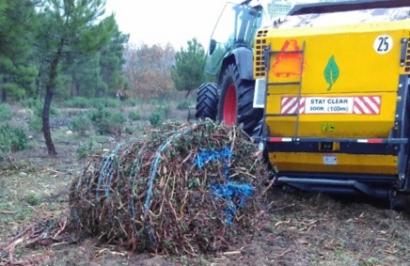 Manuales destinados a extraer biomasa de matorrales de forma sostenible y eficiente