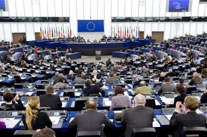 La biomasa europea está satisfecha con la votación del Parlamento Europeo