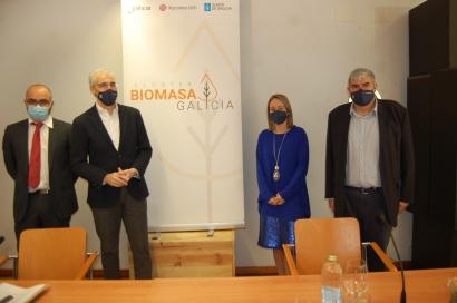 Galicia renueva su estrategia de biomasa para 2021-2025 y presenta el Clúster da Biomasa