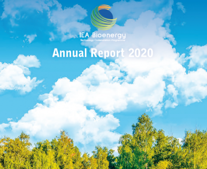 Nuevos informes de Bioenergy Europe e IEA Bioenergy reiteran la necesidad de apoyo a la bioenergía