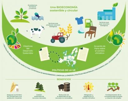 La bioeconomía y la bioenergía tienen que estar muy presentes en el plan de recuperación y en la transición ecológica