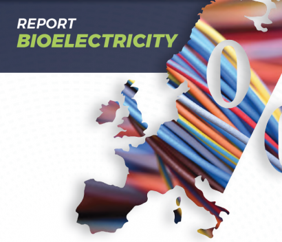 La UE superó en 2017 los 40.000 megavatios eléctricos con biomasa