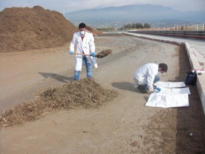 Italia, primer destino de biomasa residual del olivar acreditada en el CTAER