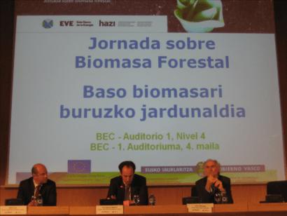 Convenio en Euskadi para potenciar el consumo de biomasa forestal