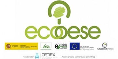 Eficiencia energética con la biomasa por bandera