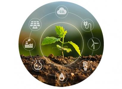 """""""Es la biomasa la que ha de adaptarse al entorno, no el entorno a la biomasa"""""""