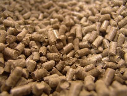Desarrollan un plan para aprovechar la biomasa de la poda