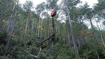 Comienzan las obras de un centro logístico de biomasa en Navarra para el suministro a calderas cercanas