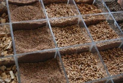 Hasta pronto Expobioenergía; hola Fira de Biomassa Forestal y Bióptima