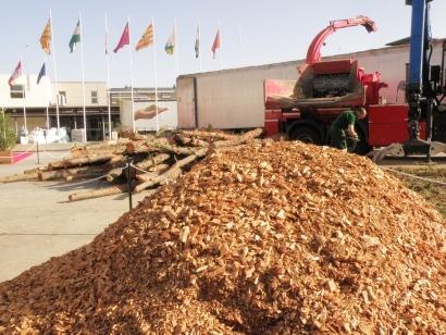 APPA duda que se ejecuten las opciones ganadoras en la subasta de biomasa