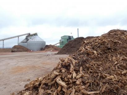 Ence comienza la tramitación de dos centrales de biomasa en Puertollano, una hibridada con termosolar