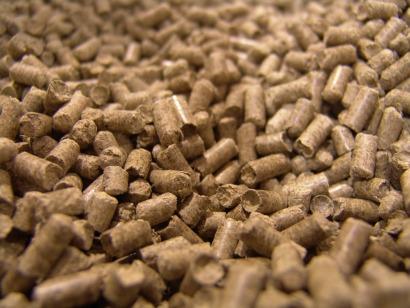 Biomasa certificada para seguir ganando mercado a los fósiles