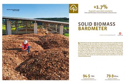 El cambio climático frena el crecimiento de la biomasa en Europa