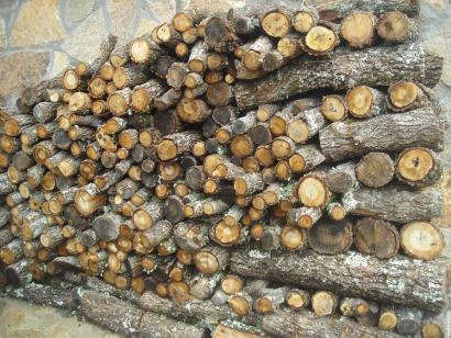 """En Castilla y León """"hay madera para todos"""" y """"biomasa de sobra"""""""
