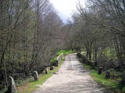 Las ayudas a la biomasa llegan al Camino de Santiago en Castilla y León y al medio rural en Madrid