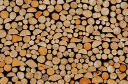 Colea la subasta de biomasa: cara para Renova, cruz para Gestamp y Elcogás