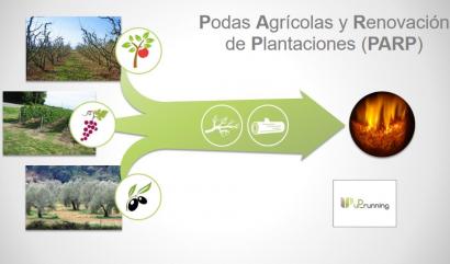 España concentra la cuarta parte del potencial europeo de podas agrícolas para producir energía térmica