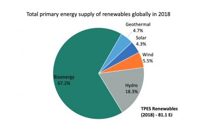 Cierra el año con el vademécum de la bioenergía: Global Bioenergy Statistics 2020