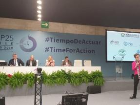 Tras la estela de la apuesta por la bioenergía contra el cambio climático dejada por la COP25