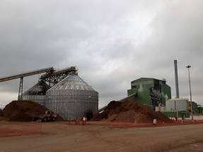 La hibridación termosolar-biomasa de Ence en Puertollano tiene que esperar
