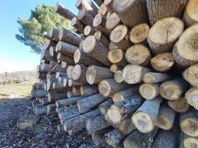 Extremadura prioriza el desarrollo rural con ayudas para producir biocombustibles sólidos