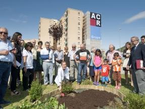 En marcha la construcción de una red de calor con biomasa en Navarra para 4.500 viviendas