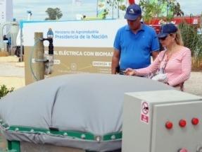 Argentina crea un programa para promocionar la energía a partir de la biomasa