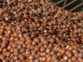 Avebiom y Circe temen una regulación europea muy estricta sobre las emisiones de agrobiomasas