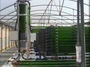 Planes para una planta de biogás a partir de algas