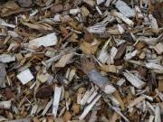 La planta de biomasa de Forestalia en Monzón sigue adelante con condiciones