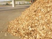Ecologistas en Acción: mejor la biomasa térmica que la eléctrica para 2050